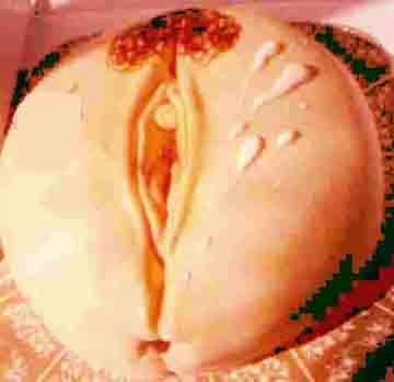 erotic-virgina-webs-copy-1